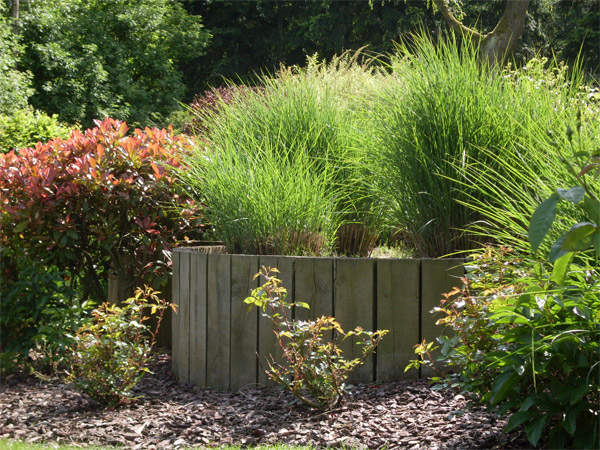 Am nagement de jardins et bassins wavre o fil de l eau for Amenagement bassin de jardin
